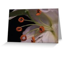Lily Hoola Hoops Greeting Card