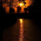 Sunset on the Canal du Midi by Philip Alexander