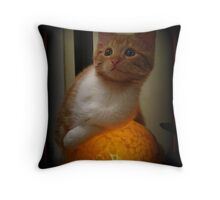 Tinkerbell & the Turtle Throw Pillow