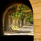 Through The Arch by Philip Alexander