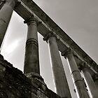 Sunlit Columns in the Roman Forum by kweirich