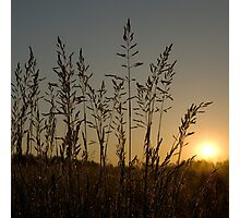 Silent sunrise Photographic Print