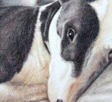 Mini Bulldog Terrier Sticker
