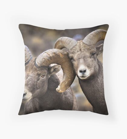 Bighorn Brothers Throw Pillow