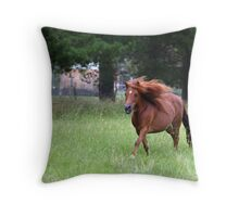 Jeany Throw Pillow