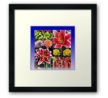 Lilies and Roses Summer Flowers Collage Framed Print