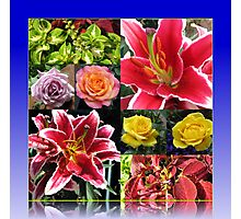 Lilies and Roses Summer Flowers Collage Photographic Print