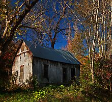 Old Cabin of Boxley by Lisa G. Putman