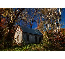 Old Cabin of Boxley Photographic Print