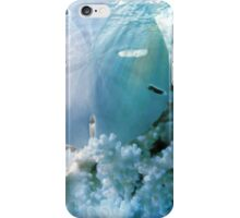 Quiet Lagoon iPhone Case/Skin
