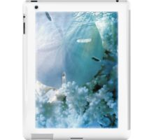 Quiet Lagoon iPad Case/Skin