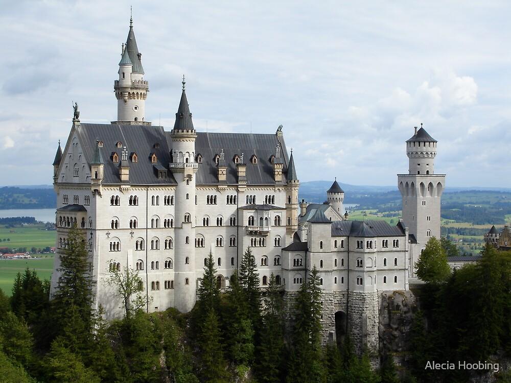 Neuschwanstein Castle in Southern Germany by Alecia Hoobing