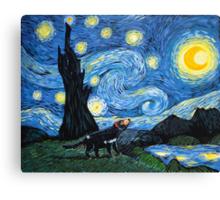 Starry Tasmanian night Canvas Print