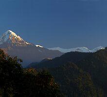 Annapurna Sanctuary, Himalaya, Nepal. by Andy Newman