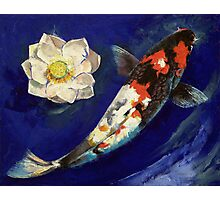 Showa Koi and Lotus Flower Photographic Print