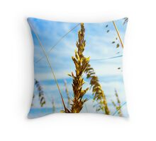 Grains Of Fort Myers Throw Pillow