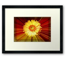 Sunshine and Lollipops ©  Framed Print