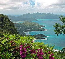 Grand Anse, Seychelles by Cindy Ritchie