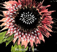 Because I am... by linmarie