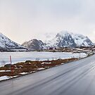 The road in the mountains by Dominika Aniola