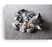 Sleeping with the Enemy Canvas Print