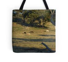 Late Afternoon On The Farm. Tote Bag