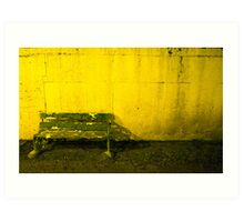 Seat For Watching The Dogs Art Print