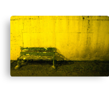 Seat For Watching The Dogs Canvas Print