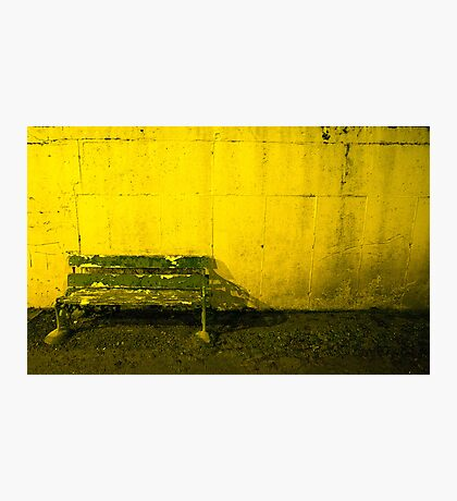 Seat For Watching The Dogs Photographic Print