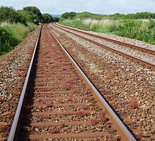 Train track  by Deb Vincent