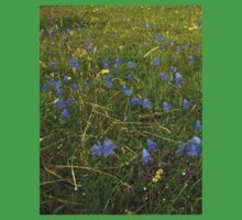A sea of Harebells, Rossbeg, Co Donegal Baby Tee