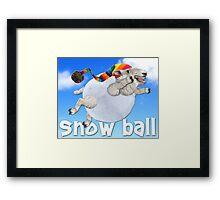 Snow Ball Framed Print