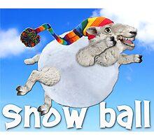 Snow Ball Photographic Print