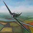 Spitfire by Lee Twigger