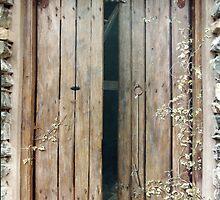 'Hay-Loft Door' - Exterior Trompe L'oeil Painting by Eyes-of-Sol