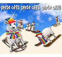 Baaad Sheep in Piste Off! Photographic Print