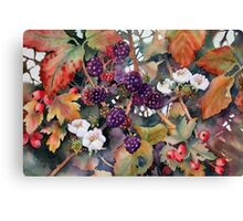 Blackberries and Hawthorn Canvas Print