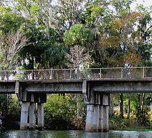 Under the Old Railroad Bridge  by Judy Wanamaker
