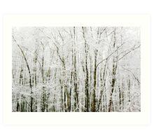 Soft Snowy Scene Art Print