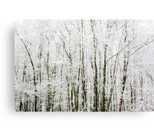 Soft Snowy Scene Canvas Print