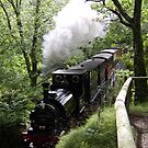 Steam Train crossing river Mid Wales by stevenw888