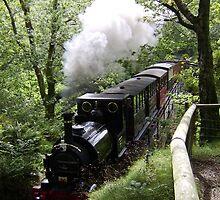 Steam Train crossing river Mid Wales by stevenw888