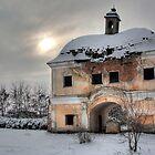 Beautiful Ruins by Alex Boros