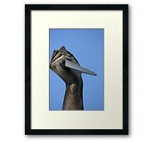 Striking Dagger Framed Print