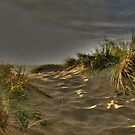 Down in the Dunes by PhotogeniquE IPA