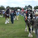 Horse Parade at Derbyshire Show 2008 by stevenw888