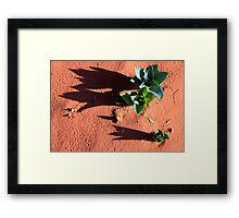 desert green Framed Print