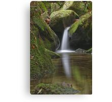 Megalong Valley NSW Australia Canvas Print