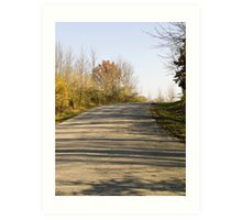 Curved Path in the Park Art Print