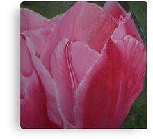 Tulip Blooming - Original Oil on wood panel Canvas Print